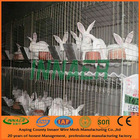 INNAER metal rabbit cages for sale