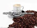 café de sabor en polvo para la alimentación