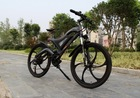 2015 new 36V 250W 350W 500W electric bicycle e bike CE SGS EN15194