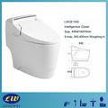 Elektro-smart WC jet absauge Spülung intelligenten toilette