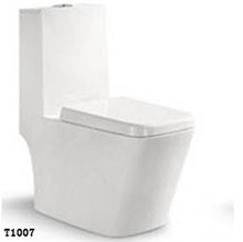 T-1007 stainless steel toilet ,ceramic toilet