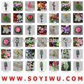 ผ้าไหมสีม่วงเข้มกุหลาบสำหรับผู้ค้าส่งจากตลาดyiwuดอกไม้ประดิษฐ์และbines