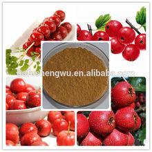 hawthorn berry/hawthorn berry powder/dried hawthorn fruit