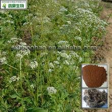 Pure Nature Valeric acid 0.8% Valerian Root Extract
