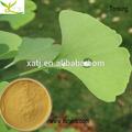 la belleza del producto ingredientes extracto de ginkgo biloba