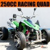 250CC ATV Quad Bike 250 (Racing )