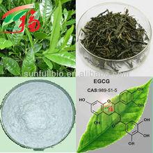 EGCG 80-95% Green tea Extract