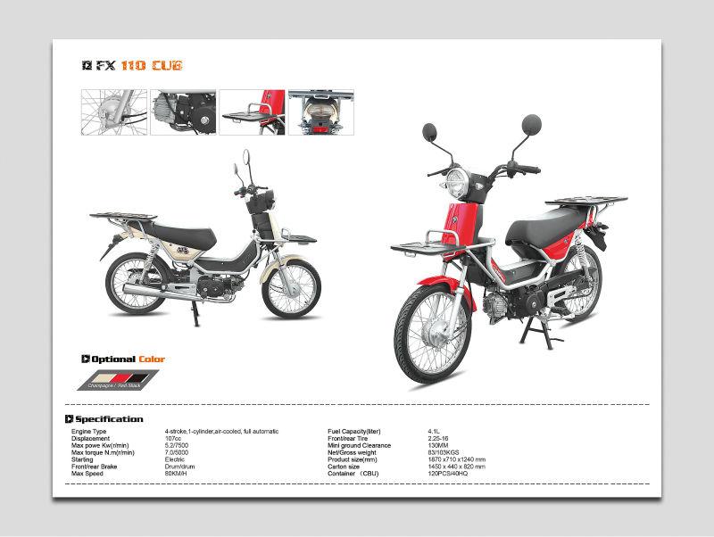 Cub-Type Motorcycles(FX110)