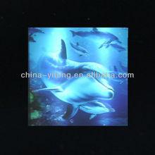 Lovely dolphin 3D lenticular card