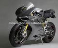 La moto de fibre de carbone partie des ajustements pour Ducati 1199