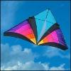 big delta kite