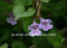 Glechoma longituba(Nakai)Kupr extract/Centella asiatica(L.)Urban
