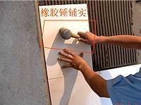 Shunan Single Part Flexible Tile Adhesive for Walls & Floors