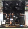 DWM COPELAND air cooled semi - hermetic condensing unites for freezer, cold room and refrigerator