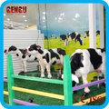 simulação de resina vaca moo