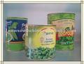 Conserve haricots verts avec le prix concurrentiel de l'usine directement