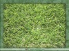 Evergreen Soft Landscape Grass Synthetic