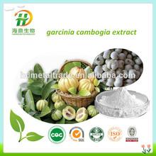 raw material garcinia cambogia extract