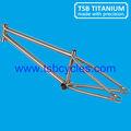 Tsb-bm1101 de titanio marco de bmx