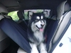 Stylish Washable Waterproof Car Pollution Prevention Pet Dog Pad