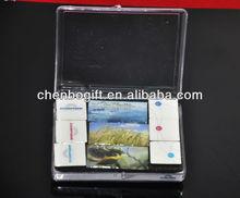 OEM Epoxy resin fridge magnet set ( 9pcs/set ) / epoxy coating magnet resin 3d fridge magnet