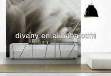 Modern Wood Display Cabinet (SM-D14A)