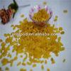 hot sell golden raisin seedless chinese origin