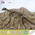 vida de tamanho de fibra de vidro modelo de esqueleto de dinossauro