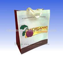 Eco New Fashion Non Woven Promotion Handle Shopping Bag