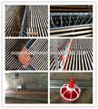 automático de aves equipamentos agrícolas para o criador de frangos frango