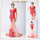 2014 Column V-neck Floor-length Appliqued Pattern Tulle Formal Evening Dress 2014