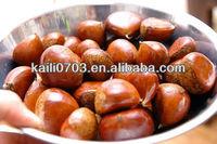 The fruit king Fresh chestnuts sale,our major distributors,