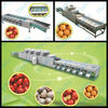 Fruit&vegetable sorting machine size&weight sorting machine price