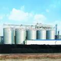 De fondo plano de almacenamiento de grano silo de acero, silo de acero para la venta, glavanized acero silo para la exportación