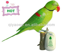 Wireless doorbell hand-painted parrot design, message recordable, CE/RoSH approved