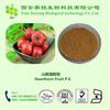 Professional Manufacturer High Quality Hawthorn Fruit P.E. 10%
