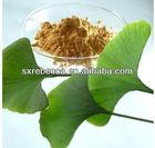 Ginkgo Biloba Extract 24/6