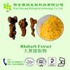 Top Quality Rhubarb Root Extract Rhein 98%