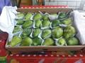 2 kg frutta guava