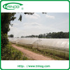 Economical used greenhouse frames for sale