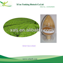 Best raw materials for skin care green tea extract cream antioxidant