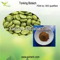 de alta calidad orgánica grano de café verde extracto de ácido clorogénico