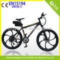 sospensione elettrico mountain bike con cerchi in lega di magnesio