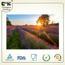 3D lenticular PET postcard of appealing sunset lavender ground view