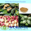 100% naturel theobromin coca semences extrait/coca semences poudre d'extrait de/poudre de graines de coca