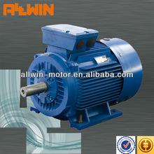 IE2 High Efficiency 3 Phase Induction Motor