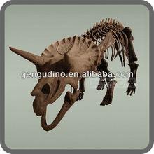 fossils model - Status of dinosaur fossils buried