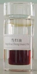 Dong Quai oil, Dong Quai Extract,Ligustilide40%--60%