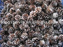 Christmas Decorative Pinecone Ornament