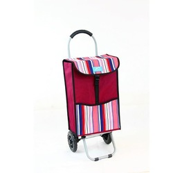 YY-26X01 Foldable Trolley Shopper fold up shopper
